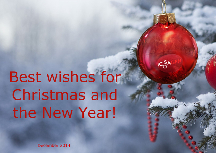 Best wishes for Christmas and the New Year from Icosacen!